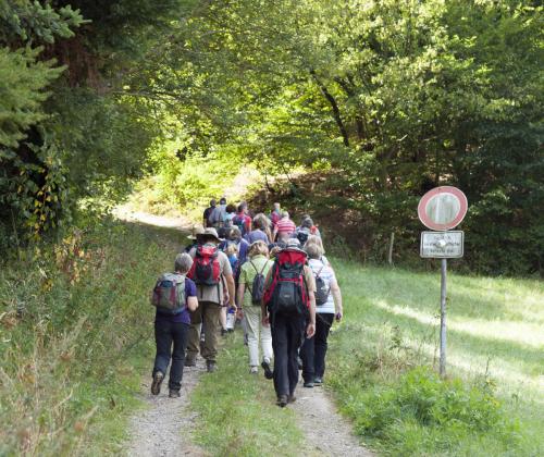 Aufstieg am Käsbachsberg